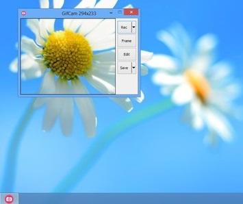 Gif dosyası olarak ekran görüntüsü alma yazılımı Gifcam